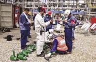 NMLD Dung Quất vượt mốc 7 triệu giờ công an toàn
