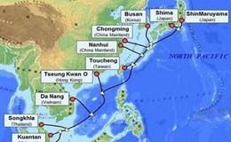 Sự cố tại tuyến cáp quang biển APG ảnh hưởng đến Internet Việt Nam