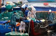 Bão số 10 còn mạnh thêm áp sát vùng biển Quảng Trị-Quảng Nam
