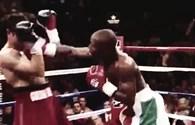 Video clip: Những trận thắng knock-out ấn tượng của Mayweather