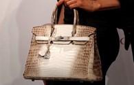 Khó tin chiếc túi xách da cá sấu trắng giá 8,5 tỷ đồng đắt nhất hành tinh