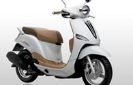 Yamaha Việt Nam triệu hồi 83.000 xe NOZZA-1DR1