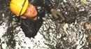 Mức lương tối thiểu và chế độ độc hại đối với công nhân môi trường