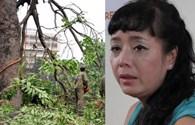 """NSƯT Chiều Xuân: Tôi gào khóc như """"mụ điên"""" bảo vệ cây"""