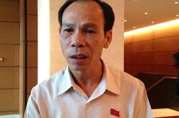 Đại biểu Đồng Nai nói cử tri muốn xây dựng Sân bay Long Thành sớm