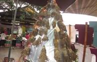 Độc đáo cây thông Noel làm bằng... 200 gốc tre