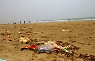 Cửa Lò (Nghệ An): Hàng quán nhắc nhở, du khách vẫn xả rác đầy bãi biển