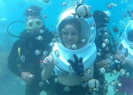 Đến Nha Trang, dạo chơi dưới đáy biển !