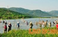Hà Tĩnh: Hàng trăm người dân đua nhau bắt cá dưới nắng nóng