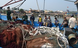 Ngư dân Quảng Nam tố lực lượng trên tàu hải cảnh Trung Quốc là kẻ cướp