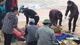 Trực tiếp: Bến cá sớm và không khí thu mua, lấy mẫu kiểm nghiệm hải sản