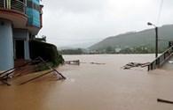 Quảng Ninh: Bão số 3 quật đổ nhiều cột điện, tàn phá hàng trăm ha rừng keo