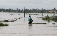 Quảng Trị: Nước dâng cao đột ngột, gần 1000 nhà dân ở Vĩnh Linh ngập trong nước