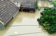 Quảng Bình: 12 người chết và mất tích do mưa lũ