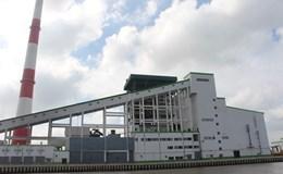Vụ nhà máy giấy Lee&Man: Giám sát môi trường bằng việc nuôi cá gần ống xả nước thải (?!)