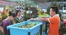 300 gian hàng tham gia Hội chợ và triển lãm thành tích nông dân xuất sắc
