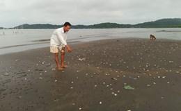 Thủy sản chết hàng loạt ở Kiên Giang: Chưa chỉ được nguyên nhân, dân tiếp tục phập phồng