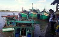 Cà Mau: Chê vỏ thép, 21 tàu xin ra khỏi chương trình 67