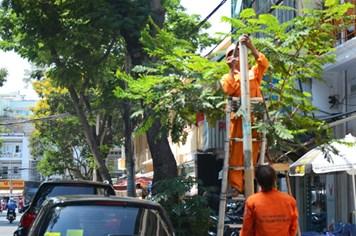 Dân nhắn tin gửi ông Đinh La Thăng, hai tuyến đường bị cấm dừng xe