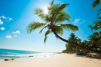 Từ A đến Z cho kế hoạch nghỉ dưỡng trọn vẹn trên đảo Phú Quốc