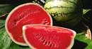 Những siêu thực phẩm giúp giảm lượng axit dư thừa trong dạ dày