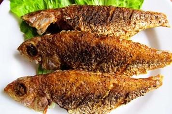 Sai lầm khi ăn cá cần bỏ ngay