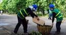 Cách làm hay từ cơ sở: Công đoàn chung tay bảo vệ môi trường