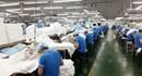 Chỗ dựa vững chắc cho người lao động