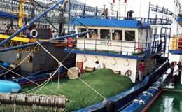 Thủ tướng giao Bộ Công an điều tra vụ tàu cá kém chất lượng
