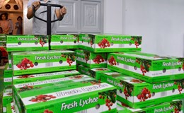 2 tấn vải thiều  được chiếu xạ tại Hà Nội đã xuất khẩu sang Úc