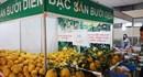 Những  mặt hàng lạ, độc, rẻ tại Hội chợ Xuân Đinh Dậu 2017