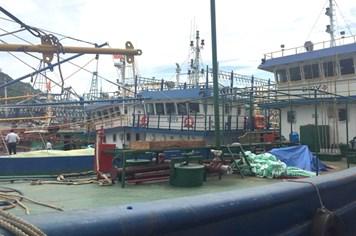 """Một """"tàu 67"""" gặp nạn, chìm trên biển nghi ngờ do bị tráo máy"""