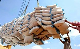 Đến năm 2030, xuất khẩu gạo đạt 4 triệu tấn, gạo cấp thấp chỉ chiếm 10%