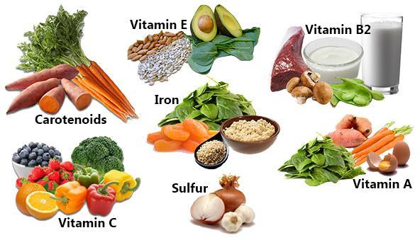 Kết quả hình ảnh cho chất dinh dưỡng