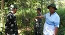 Đồng Nai khảo sát dự án làm đường xuyên lõi vườn quốc gia Cát Tiên