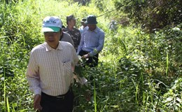 Bộ Nông nghiệp tạm dừng dự án làm đường trong Vườn quốc gia Cát Tiên