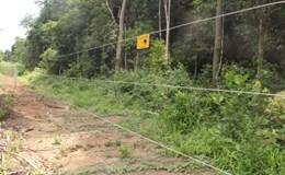 """Hàng rào điện tử ngăn cách người - voi ở Đồng Nai: """"Chống chỉ định"""" với trẻ em"""