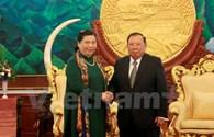 Lãnh đạo Lào tiếp Đoàn đại biểu cấp cao Đảng, Nhà nước Việt Nam