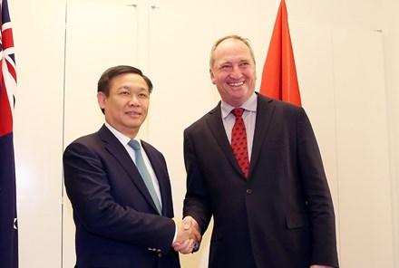 Cơ hội xuất khẩu tôm tươi nguyên con Việt Nam sang Australia   - ảnh 1