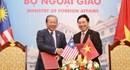 Việt Nam - Malaysia giải quyết vấn đề ngư dân, tàu thuyền trên cơ sở hữu nghị