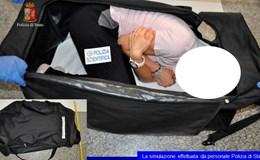 Người mẫu Anh bị bắt cóc, nhét vào vali đem đấu giá trên web đen
