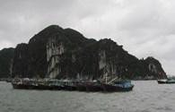 Cơn bão số 6: Sẵn sàng phương án ứng cứu dân vùng trũng đảo Hà Nam