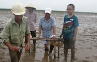 """Nguyên Uỷ viên Bộ Chính trị, nguyên Thường trực Ban Bí thư Phan Diễn: """"Tôi vẫn lội ruộng cùng nông dân"""""""