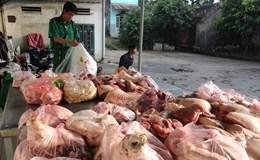 Hoan Hô: Thông điệp quyết liệt của Chính phủ đối với thực phẩm bẩn