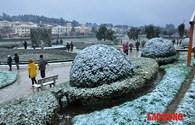 Người dân nô nức ngắm tuyết rơi trắng xóa ở Sa Pa sáng 24.1
