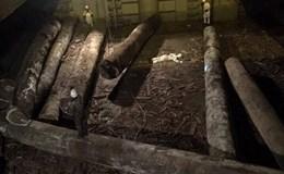 Một thuyền phó người Trung Quốc bị gỗ đè tử vong