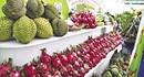 Hội chợ đặc sản vùng miền Việt Nam 2016
