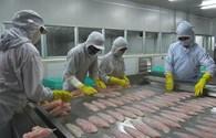 Người Việt, đừng tự đầu độc (kỳ 5): Thịt, cá, vừa ăn vừa… run