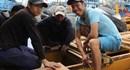 Ngư dân đưa lươn biển ra... thế giới