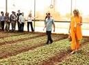 Hoàng hậu Hà Lan đến thăm và làm việc với nông dân Lâm Đồng